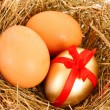 Brown,white and golden hen's egg in the grassy nest — Stock Photo