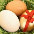 Brown,white and golden hen's egg in the grassy nest - Stock Photo