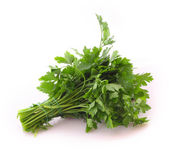 Bouquet of parsley isolated on white — Stock Photo