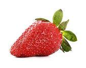 Strawberry isolated on white — Stock Photo
