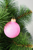 Hanging sparkling ball on the branch of new year tree — Stock Photo