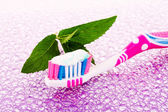 Tooth brush and mint leaves — Stock Photo