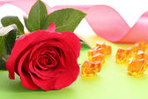 Rose and gems — Stock Photo