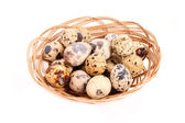 Group of spotted quail eggs in the braided backet isolated in wh — Stock Photo