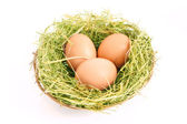 Three brown hen's eggs in the grassy nest isolated on white — Stock Photo