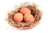 Group of brown hen's eggs with a sleeping face in the nest isola — Stock Photo