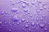 Violet water drops background — Stock Photo
