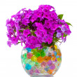 Beautiful flowers in vase — Stock Photo