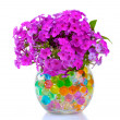 Beautiful flowers in vase — Stock Photo #6791020