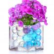 Beautiful flowers in vase — Stock Photo #6791079