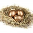 Golden eggs in nest — Stock Photo #6791222