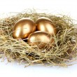 Golden eggs in nest — Stock Photo #6791226