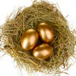 Golden eggs in nest — Stock Photo