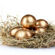 Golden eggs in nest — Stock Photo #6791247