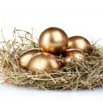 Golden eggs in nest — Stock Photo #6791247