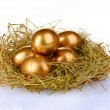 Golden eggs in nest — Stock Photo #6791252