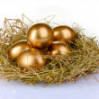 Golden eggs in nest — Stock Photo #6791257