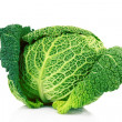 Savoy cabbage isolated on white - Zdjęcie stockowe