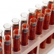Stock Photo: Test-tubes isolated on white