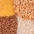 Grains on brown - Stock Photo