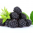 Beautiful blackberries — Stock Photo #6792246