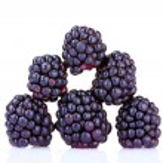 Beautiful blackberries — Stock Photo