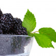 Beautiful blackberries in glass — Stock Photo