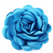 Beautiful blue satin flower — Stock Photo