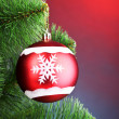 Beautiful Christmas ball on fir tree — Stock Photo #6794309
