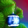 Beautiful Christmas ball on fir tree — Stock Photo