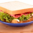 Sandwich — Stock Photo #6795138