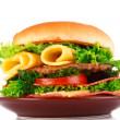 Hamburger isolated on white — Stock Photo #6795194