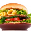 Hamburger isolated on white — Stock Photo #6795195