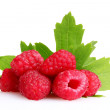 Foto Stock: Fresh raspberries