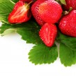 Stock Photo: Many strawberries isolated on white