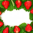 Stock Photo: Many strawberries and leaves makes frame