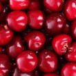 Stock Photo: Cherries background