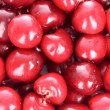 Cherries background — Stock Photo #6796000