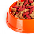 Royalty-Free Stock Photo: Dog food in bowl