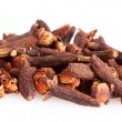 Spice clove — Stock Photo