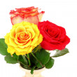 Royalty-Free Stock Photo: Red and yellow roses isolated on white