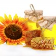 Beautiful combs, honey and sunflower — Stock Photo