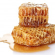 Combs with honey isolated on white — Stock Photo