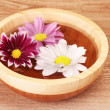 Stock Photo: Pink and white flowers floating in bowl