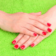 Beautiful hands with red manicure — Stock Photo
