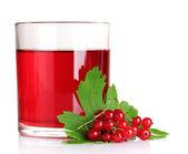 стакан сока и красной смородины — Стоковое фото