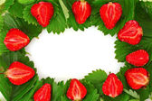 Many strawberries and leaves makes frame — Stock Photo