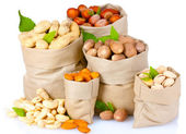 Variety of nuts in bags — Stock Photo