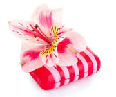 Pink flower and soap isolated on white — Stock Photo