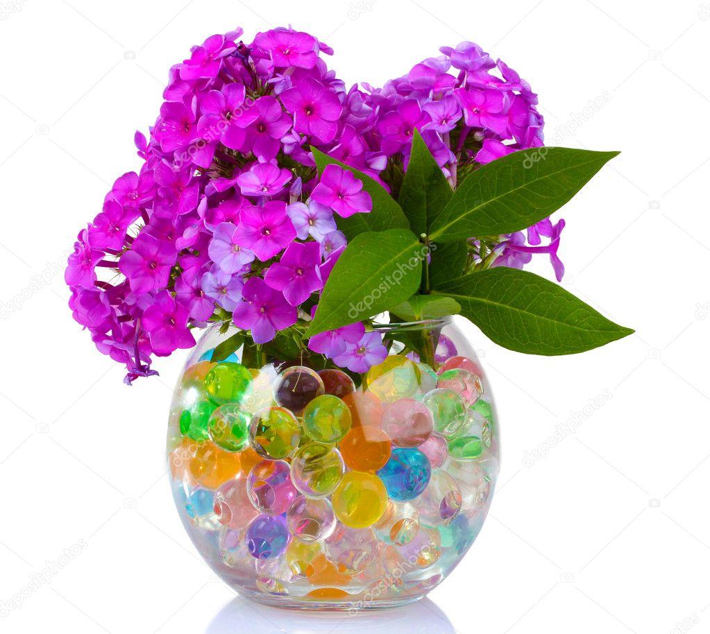 Beautiful Flowers In Vase Stock Photo 169 Belchonock 6791029